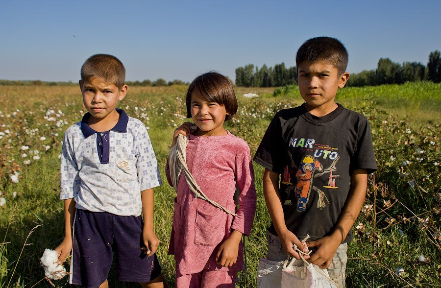 18 - La esclavitud infantil en la industria del algodón en Uzbekistán
