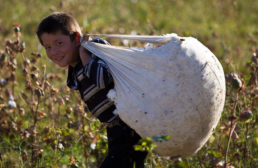 19 - La esclavitud infantil en la industria del algodón en Uzbekistán