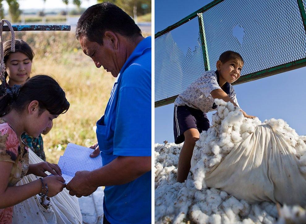25 - La esclavitud infantil en la industria del algodón en Uzbekistán