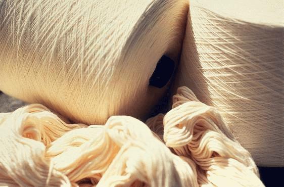 Algodón orgánico, Algodón orgánico, un compromiso social y medio ambiental, Le petit BAOBAB - BLOG